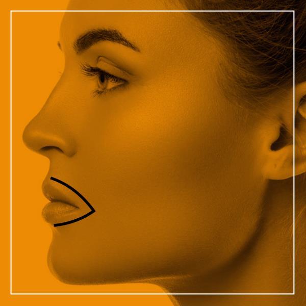 Profilo Labbra